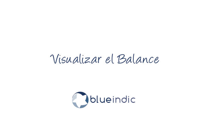 Visualizar el Balance