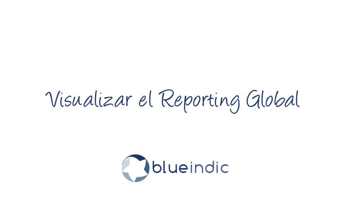Visualizar el Reporting Global